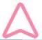 pink pointer
