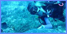 Leslie O'Neill Scuba Explorers with sea turtle